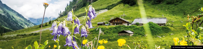 Header-Vorarlberg