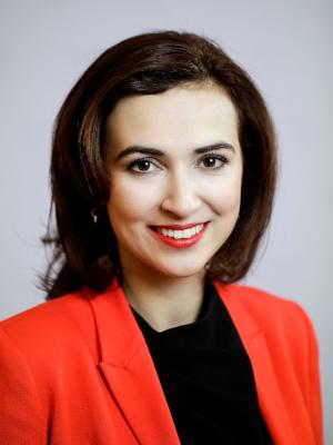 Alma Zadi?, Bundesministerin für Verfassung, Reformen, Deregulierung und Justiz